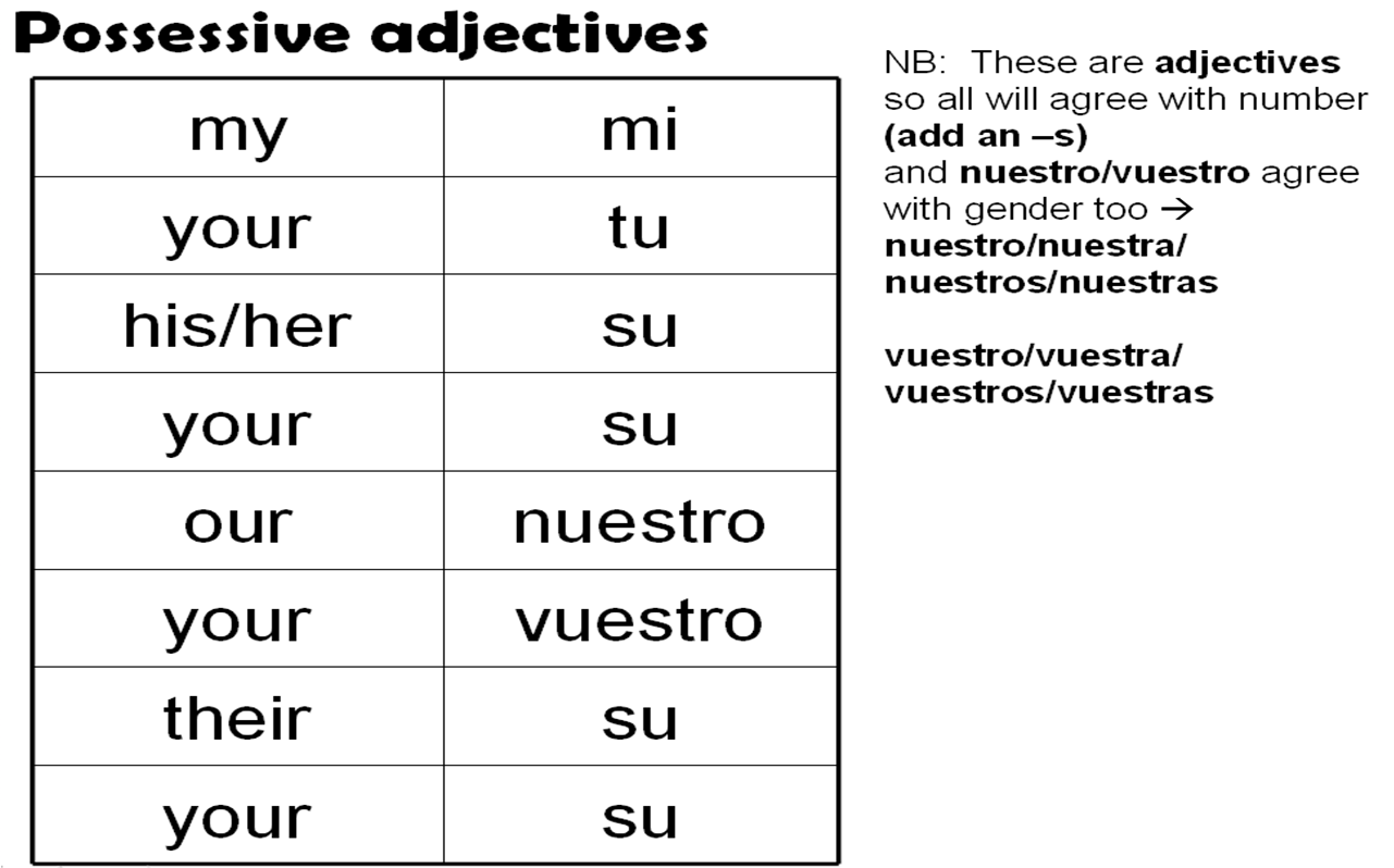 Spanish Possessive Adjectives Spanish