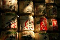 Drums Tokyo Temple