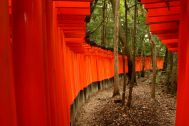 Outside the Torii at Fushimi Inari Shrine