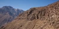 Colca-Canyon-11