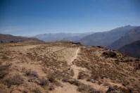 Colca-Canyon-12