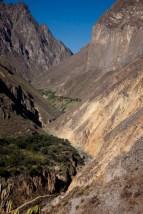 Colca-Canyon-18