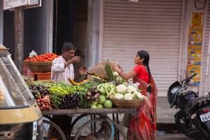 GB13_India_Udaipur_Blog-72