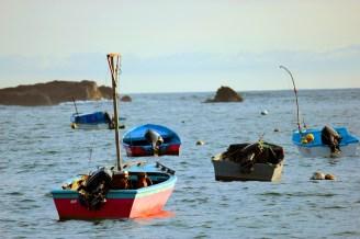 November 27, 2012: San Jaunillo Fishing Fleet