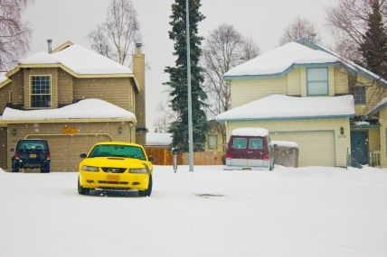 March 23, 2013: Yellow Snow