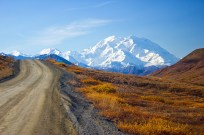 Denali and road