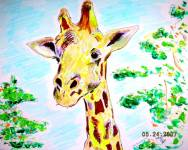 Giraffe 2007