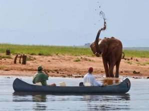 Zimbabwe, Musango Safari Camp, Lake Kariba © David Rogers