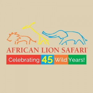 African Lion Safari Adventure & GIVEAWAY