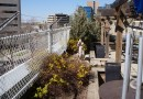 General Hospital Roof Garden