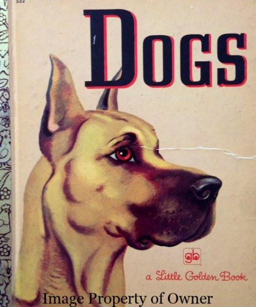 Dogs I used to pick out my future Zoo from this one - Yello80s.com