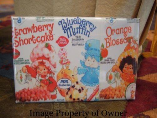 Breakfast foods magnet- Strawberry/Blueberry/Orange Blossom via Etsy