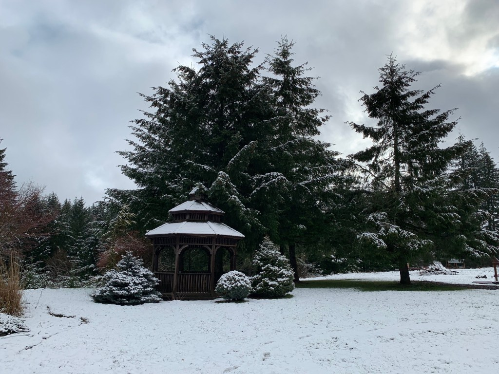 Brown gazebo with snow