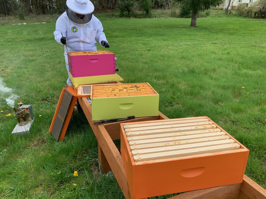 Pulling apart beehive