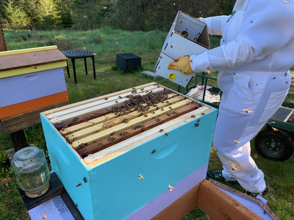Tipping out bees
