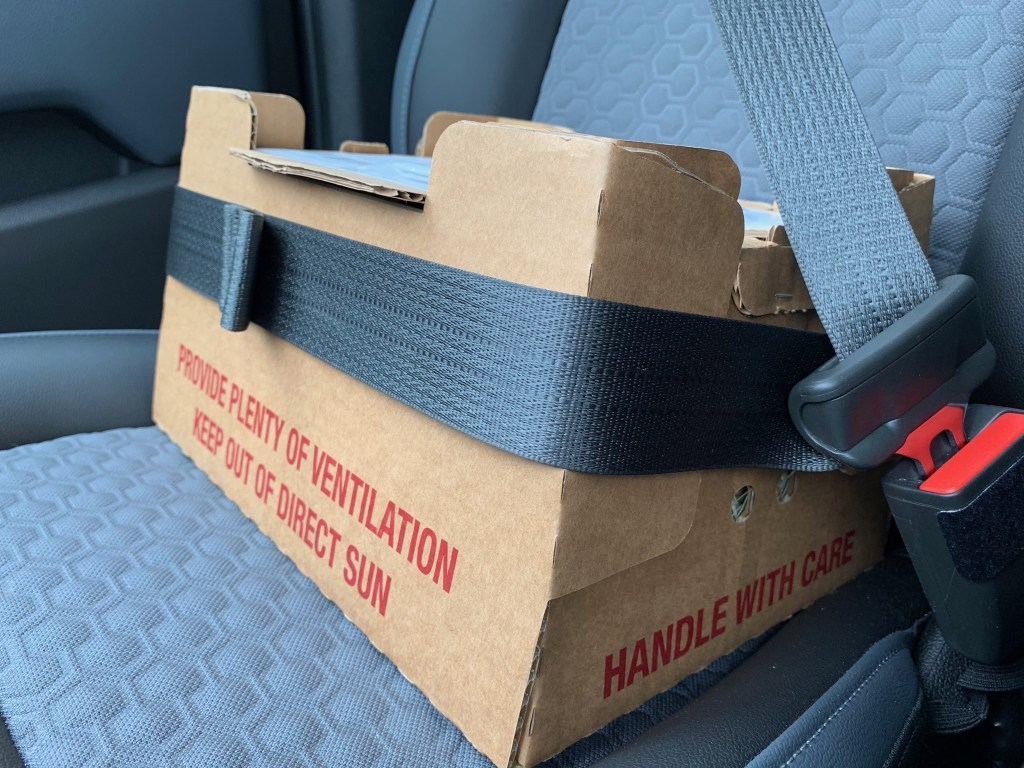 Box of ducklings in truck seat