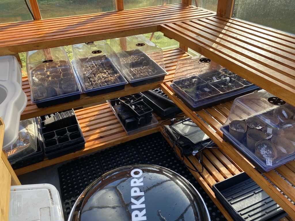 Trays on shelves