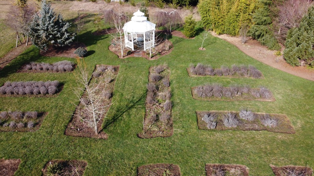 Flowerbeds and white gazebo