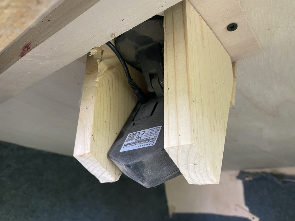 Cat house camera