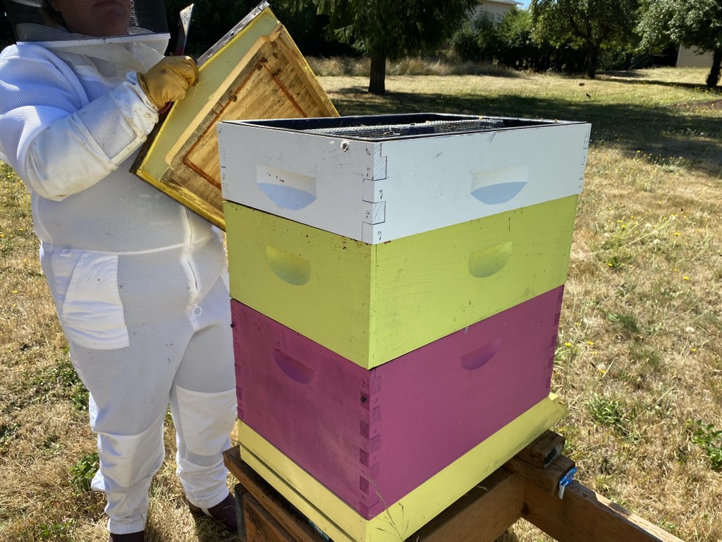 Adding feeder to beehive
