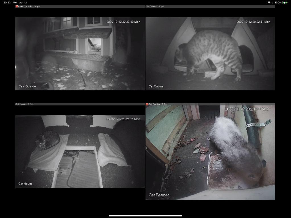 Screenshot of cams