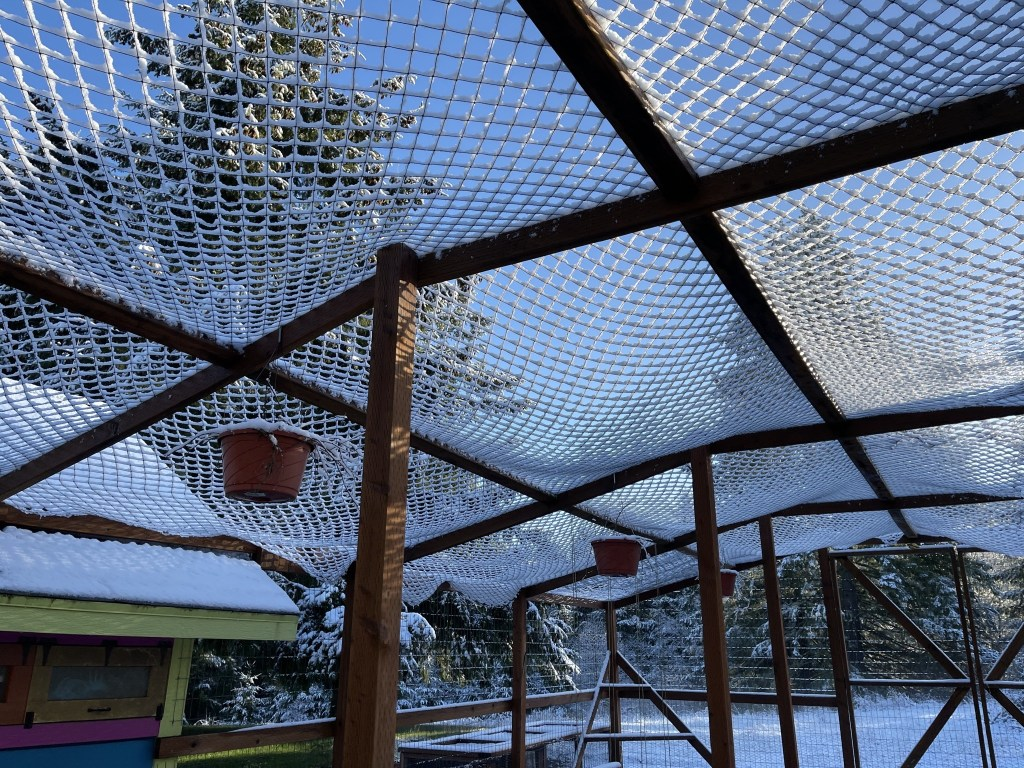 Chicken run roof netting