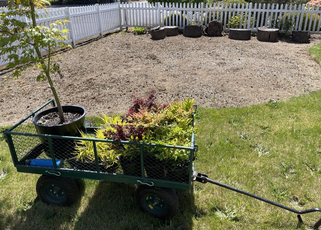 Cart with plant and empty garden