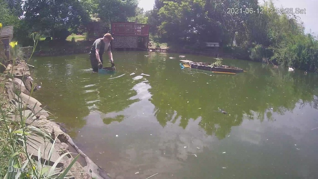 David in pond with bucket of dirt