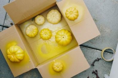 yellowgirl-Pastell Herbst-Deko- bunte Kürbisse und Trockenblumen (5 von 5)