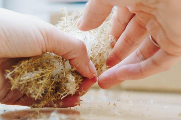yellowgirl-DIY Ostereier-Trash terracotta-Trockenblumen-pampasgras (16 von 38)
