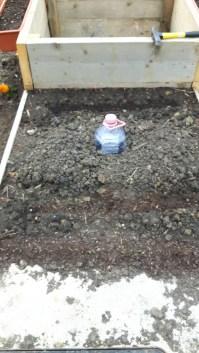 În spatele puțului de aerisire/alimentare a bazinului de apă am imaginat un pat pătrat, dedicat anul acesta cultivării de zucchini. Am pus pe latură a pătratului gălbenele și pe aclte trei coțunași și (provizoriu - până vor crește mai înalți dovleceii) niște salată. Recipientul de palstic de 5 litrii va asigura udarea pe adâncime a dovlecilor.