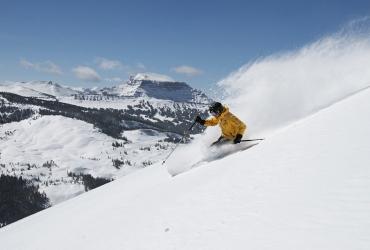 A perfect mix of beginner terrain, intermediate runs and expert chutes.