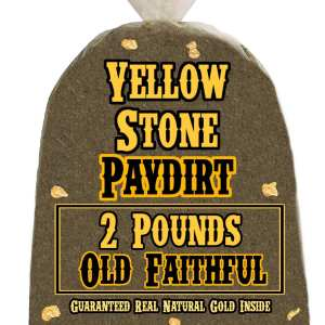 2 Pounds of OLD FAITHFUL (More Gold!) Gold-Rich Unsearched Paydirt Concentrate from YELLOWSTONE PAYDIRT