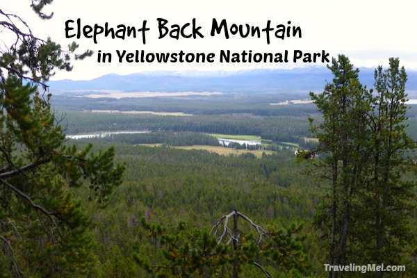 Elephant Back Hike in Yellowstone