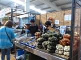 A wide range of fresh sea-food