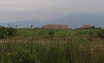 The pyramid tombs of Sipán