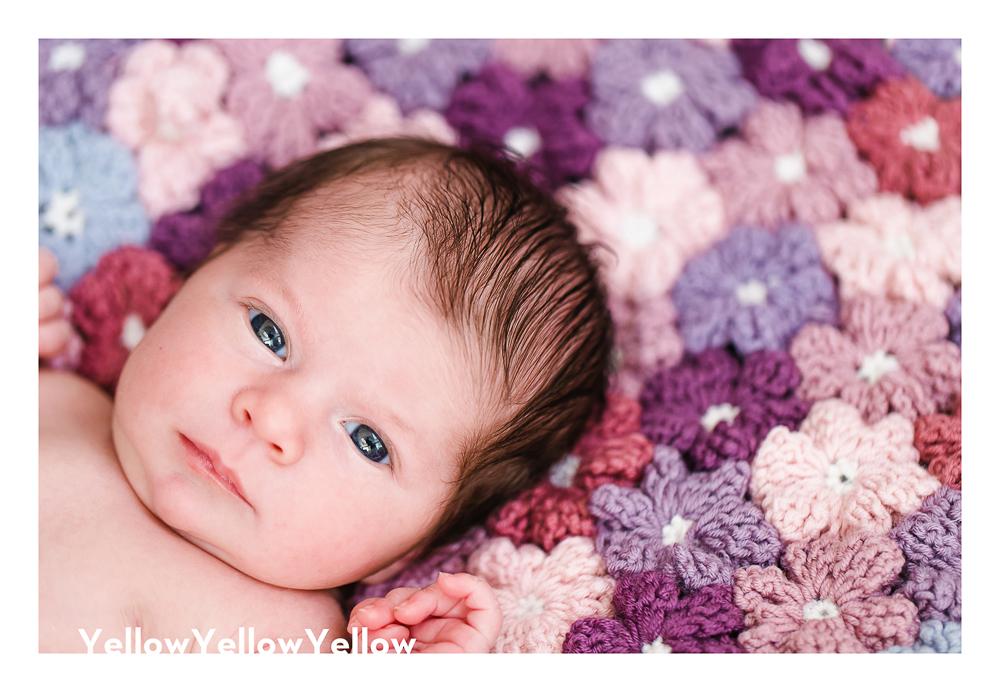 Baby Abby | Newborn Session-11981