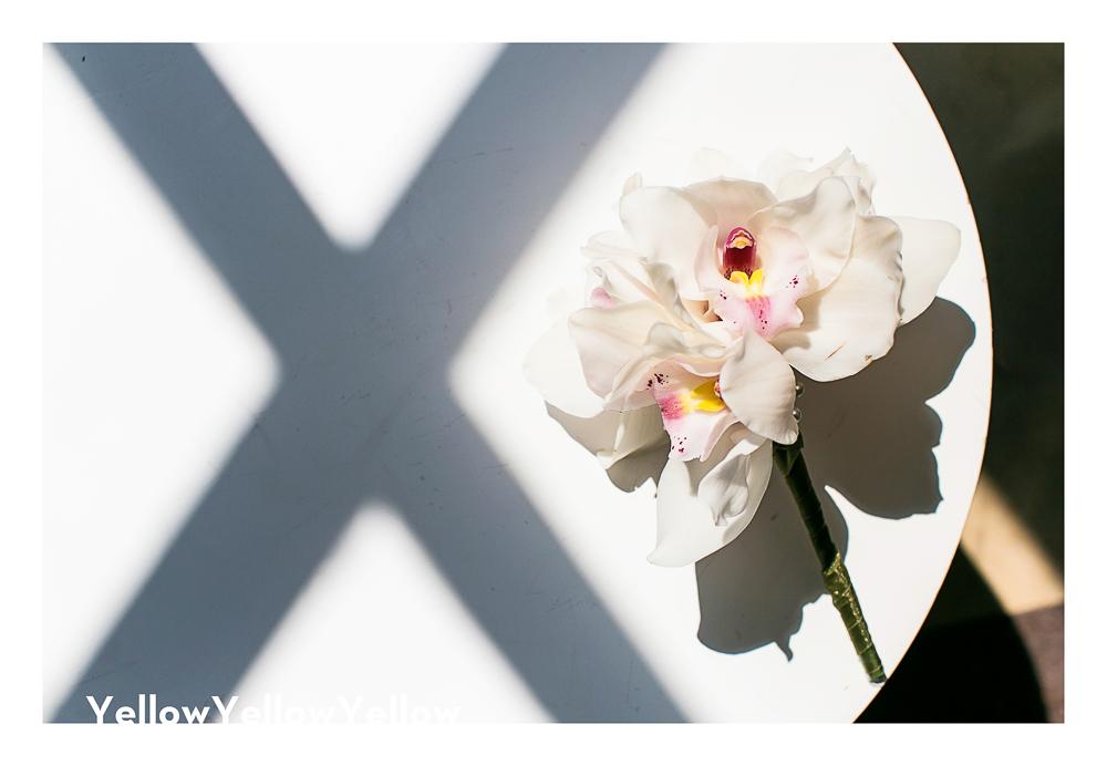 Berkeley-Asbury-Park-Photographer