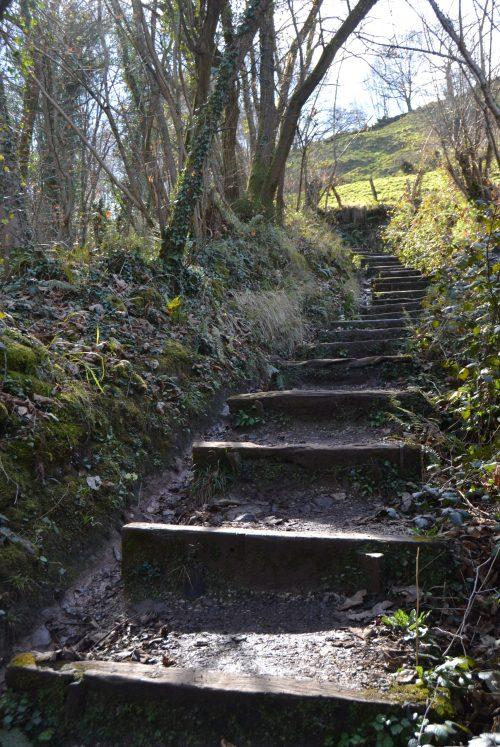 Zona de escaleras
