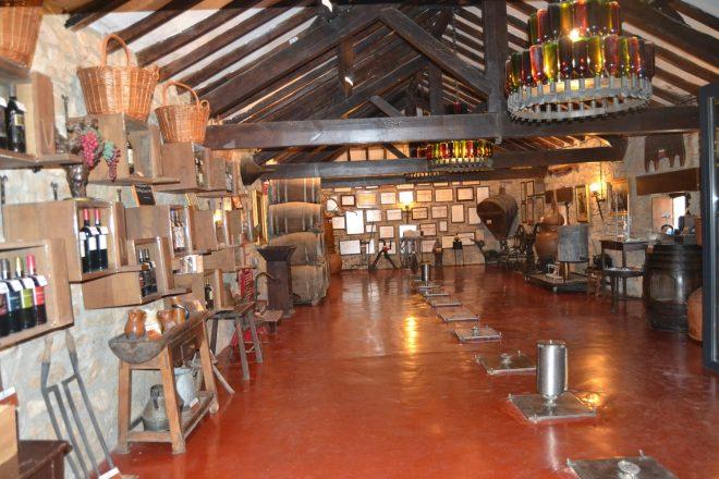 Planta baja del Museo del Vino