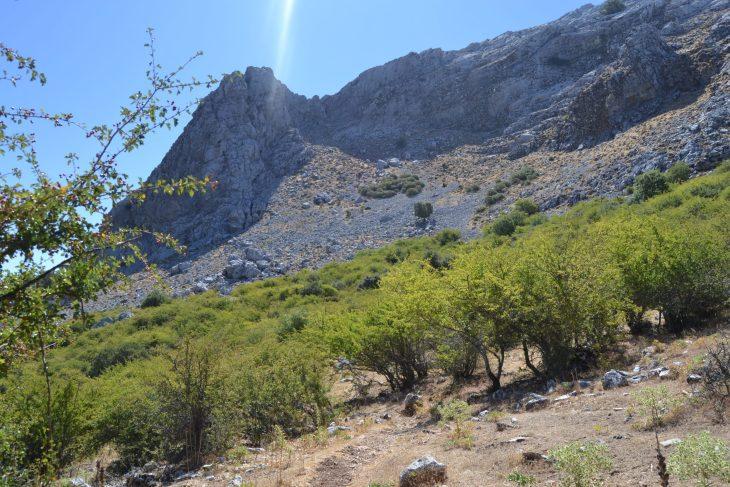 Ruta por los montes de Grazalema
