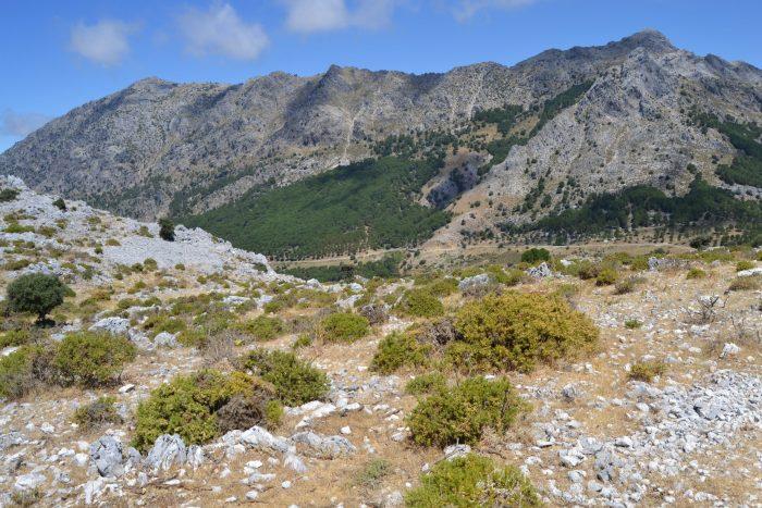 Sierra del Pinar