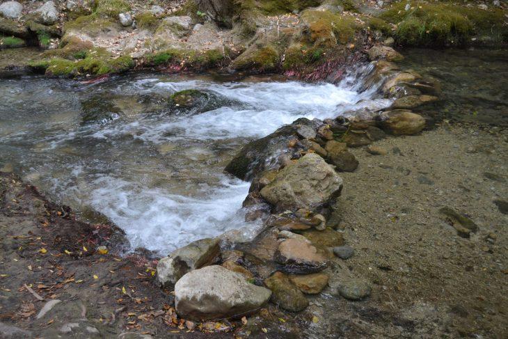 Cauce del río Majaceite