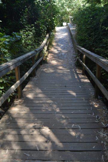 Puente hacia el aparcamiento de Benamahoma