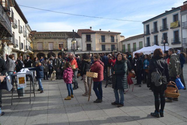 Inicio de la Tuitquedada Micológica en la Plaza de El Barco de Ávila