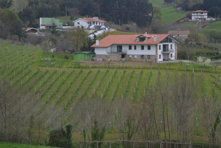 Viñedos y Bodega Basarte Ados