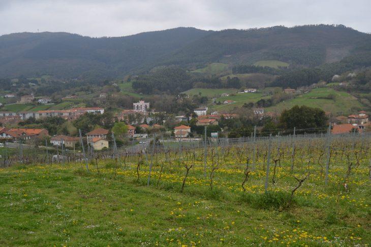 Bakio en medio del valle
