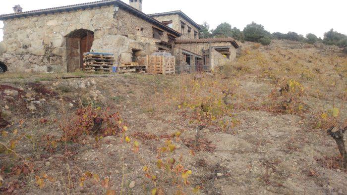 Viñas y Bodega Garnacha Alto Alberche