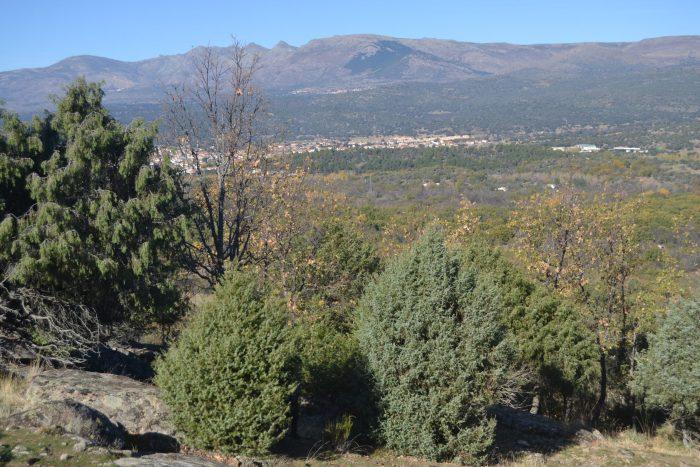 Vista de Navaluenga con la Sierra de Gredos al fondo