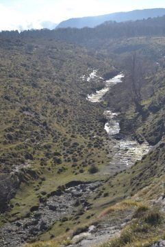Cauce del agua del Salto del Nervión